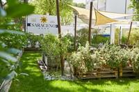 Giardino e orto del Saraceno