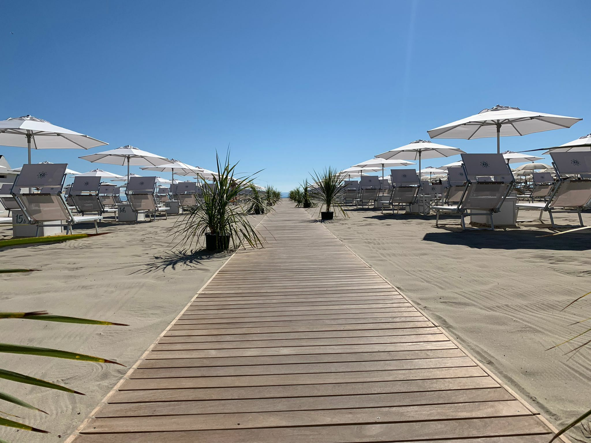bagno giuliano 247 ombrelloni distanziati, animali ammessi, aperitivo sulla spiaggia, lungomare milano marittimapasserella e palme milano marittima